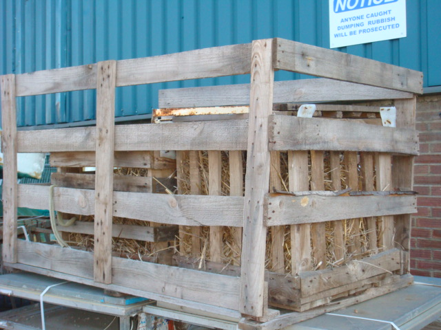 Open crate- Various sizes - Crate-open4