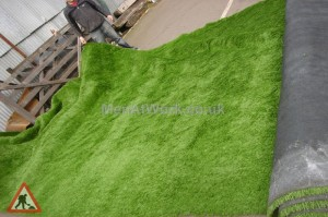 Fake Grass - Fake Grass