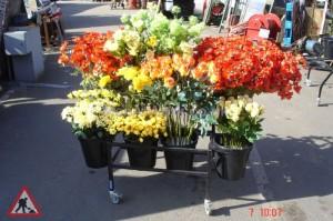 Flower Stand - Flower Stand b3