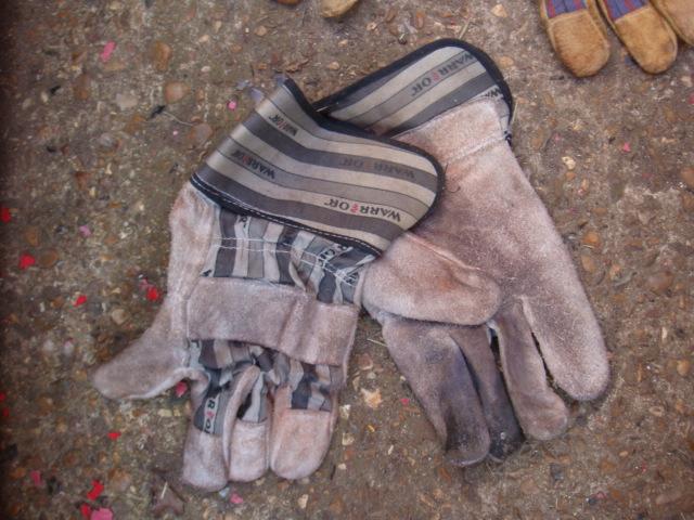 Gloves – Various Colours - Gloves (2)