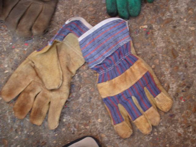 Gloves – Various Colours - Gloves (3)
