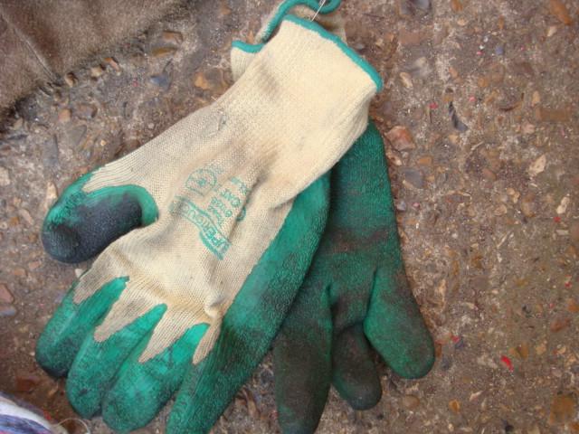 Gloves – Various Colours - Gloves (4)