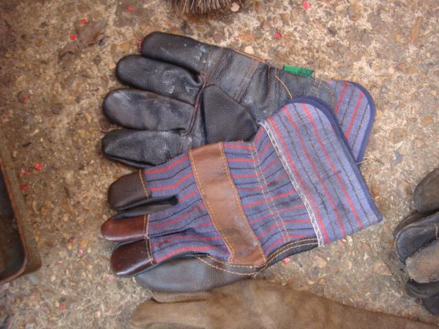 Gloves – Various Colours - Gloves (6)
