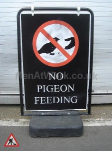 No Pigeon Feeding - No Pigeon Feeding