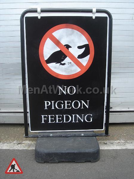 No Pigeon Feeding - No Pigeon Feeding