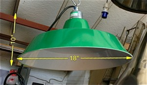 Coolie Light Green 10 Available - Coolie Light