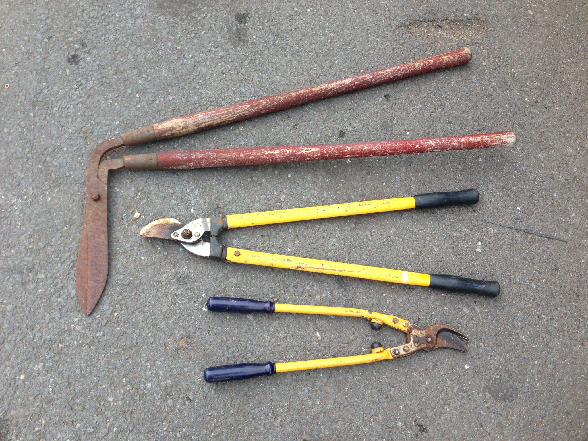 Gardening Hand Tools - IMG_4612